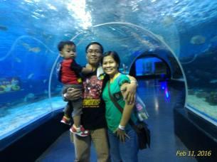 one big aquarium