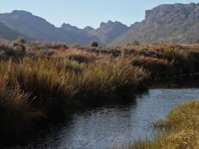 Driehoek camp view