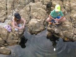 At a rock pool