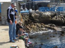 Fishing at the New Harbour