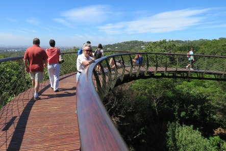 The Boomslang