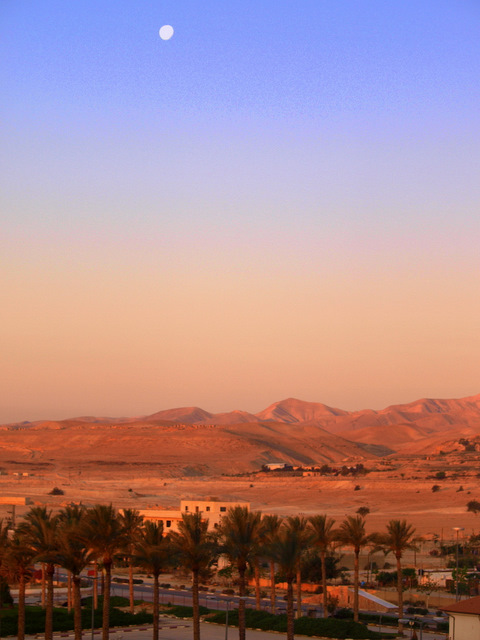 The moon shines in the morning light in the desert near Jericho