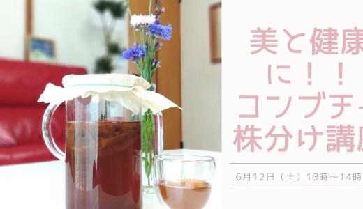 美と健康に!!コンブチャ株分け講座!