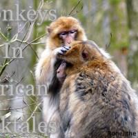 Monkeys in Mythology and Folklore #FolkloreThursday