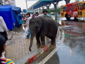 thaitrip2-558-2