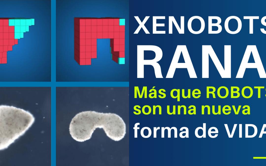 Xenobots Rana: Más que robots una nueva forma de vida.