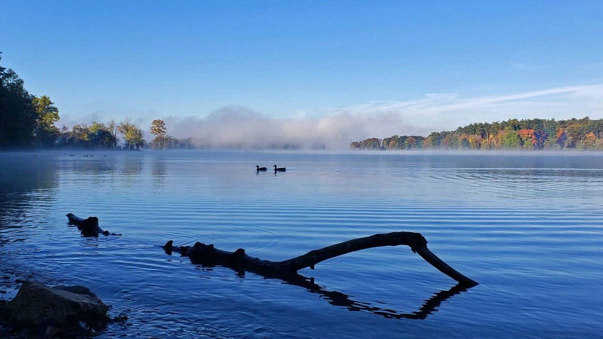 Lock Raven Reservoir