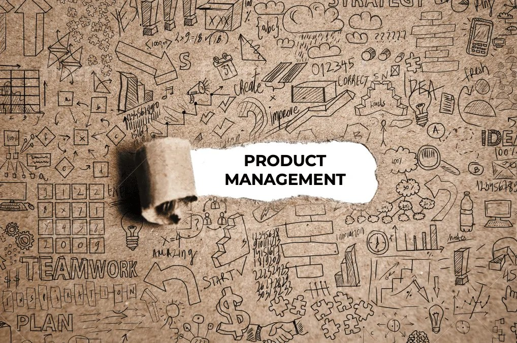 Product Managers – Who Needs Them Anyway?