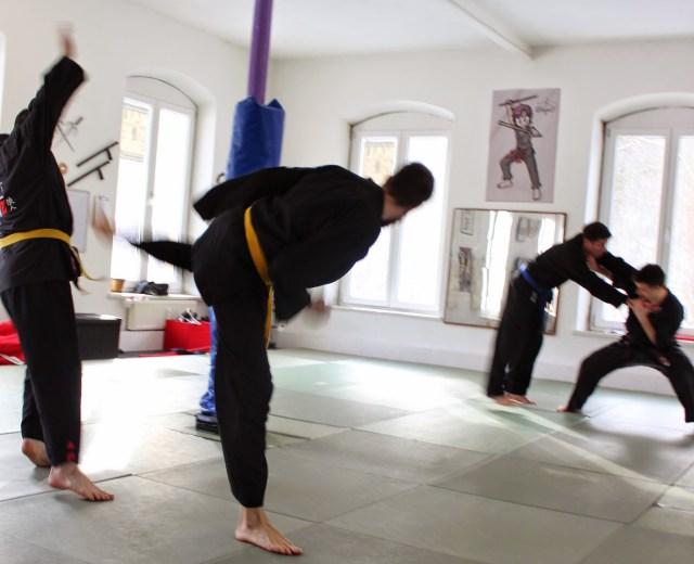 Ju-Jutsu-Do Workshop und Pruefung 31.01.2015 in RoninZ Kampfkunstschule