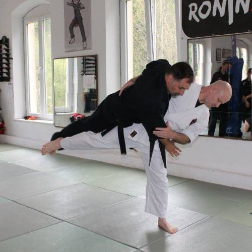 Fritz Greutert GOSHINDO Mai 2017