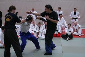 Ju-Jutsu Megaseminar 40 Jahre Ju-Jutsu am 18. Juli 2009 in Philippsburg