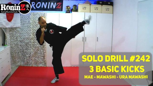 Solo Drill 242 3 Basic Kicks Mae - Mawashi - Ura Mawashi