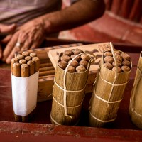 The Art of the Cuban Cigar