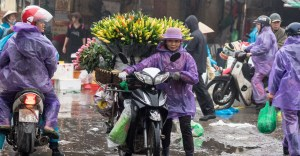 Hanoi Morning Market