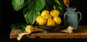Hydrangeas and Lemons - a Still Life Photograph