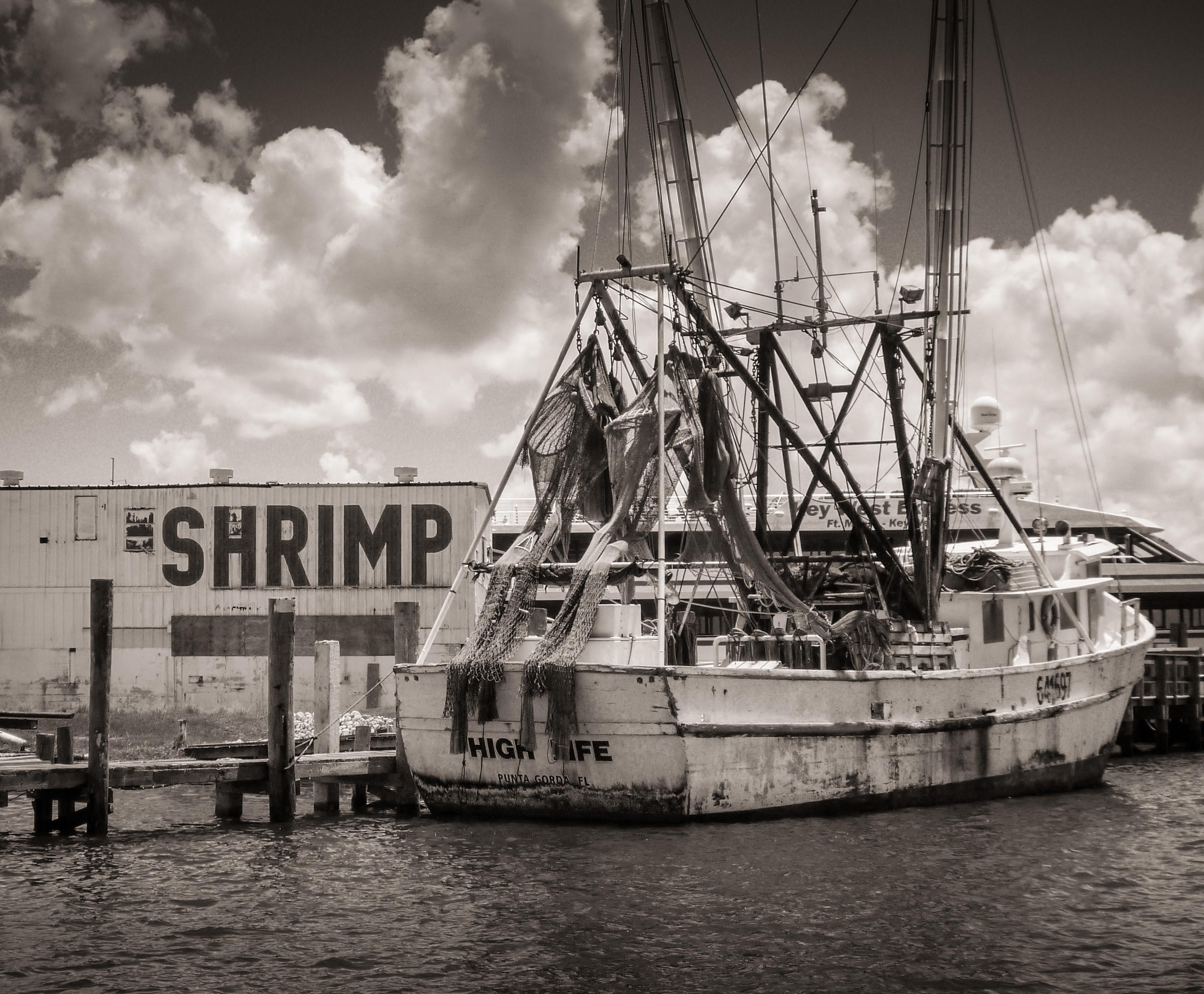 """High Life"" Shrimp Boat at Dock"