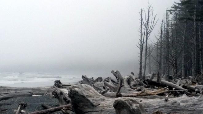 Rialto Beach in Olympic National Park, Washington