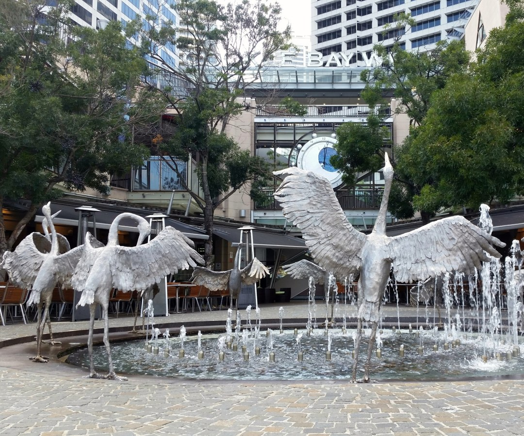 Blog Swans