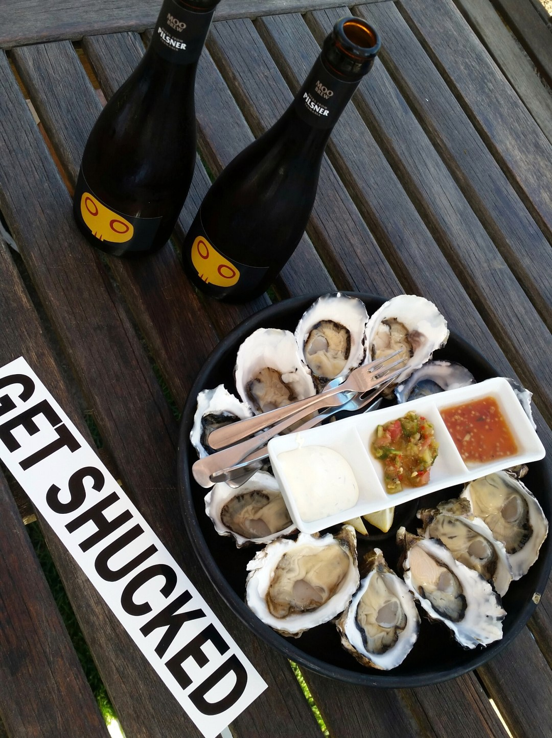 blog oysters