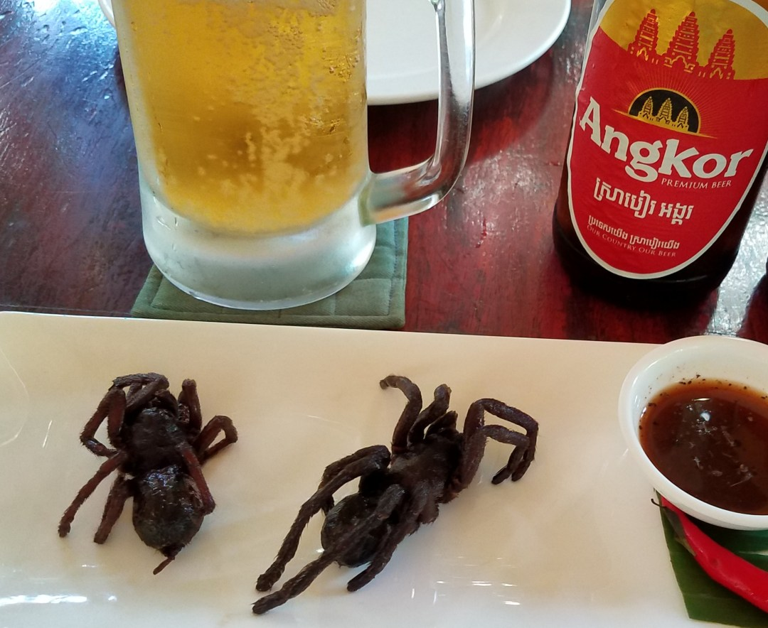 Tarantula for lunch