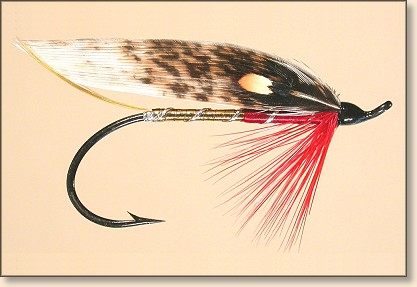 Gold & Red Strip Wing - Pattern by Greg Scott Hunt