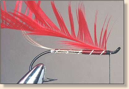 Folded hackle attached