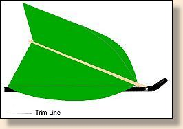 Wing feather shape prior to trimming and, showing the ideal shape indicated by the trim lines.