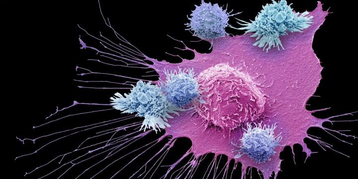 Immunotherapy: Studies with Neuroendocrine Neoplasms
