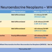 Living with Neuroendocrine Neoplasms - a site by Ronny Allan