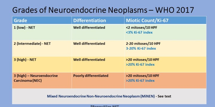 Neuroendocrine Neoplasms – Grade and Stage (incorporating WHO 2017 changes)