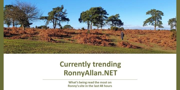 Currently trending on RonnyAllan.NET