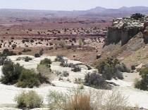 A desert of some sort