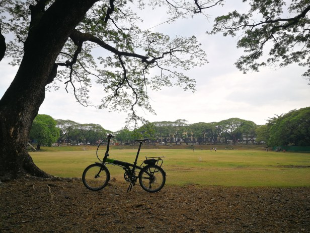 bike in front of a wide open park