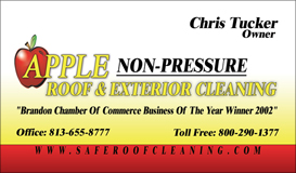 roof-cleaning-tampa-florida-2