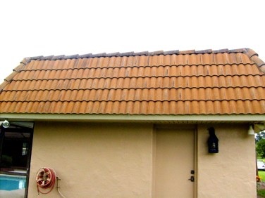 Tile Roof Cleaning Tampa 33647