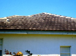 Roof Cleaning Lithia Florida 33547