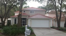 813-655-8777 Roof Cleaning Tampa Florida