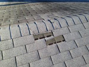 cracked shingle newark de