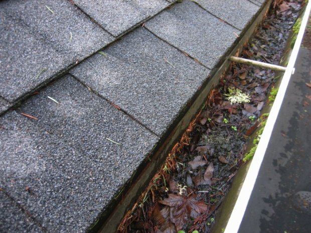 Image result for debris gutters