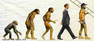 A Naked Ape in a Digital World