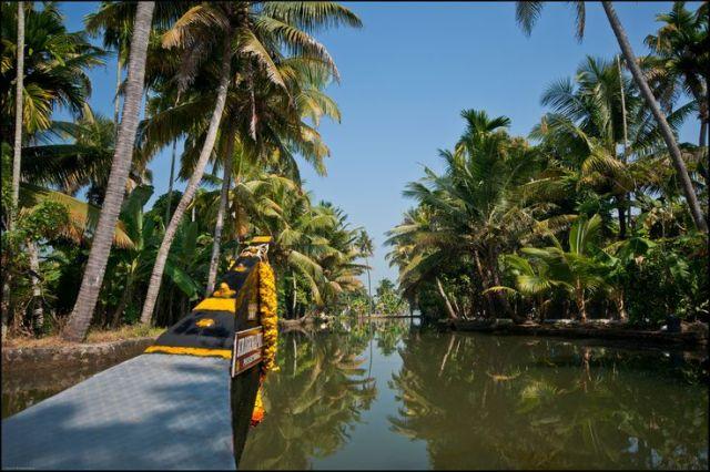 India_Kerala_province_rooftopantics_travelblog_travelconsultant5