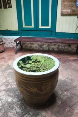 beautiful water basin at the entrance hall