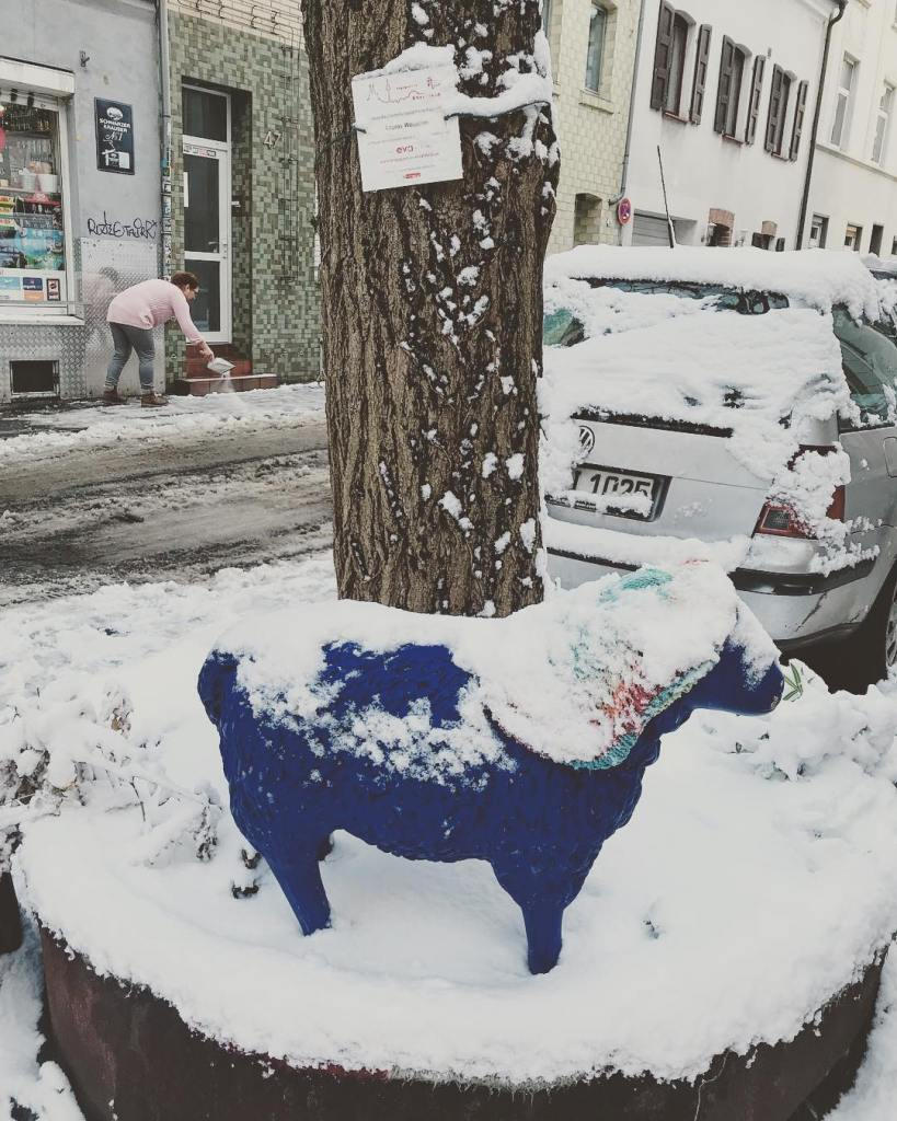 Snow in Cologne The blue sheep and the salt spreadinghellip