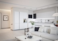 Small Apartment Design For Couples With White Color Scheme ...