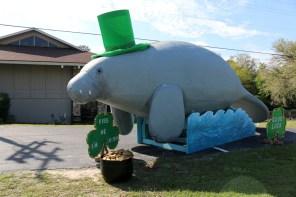 Die Homosassa Springs werben mit einem ganz besonderen St. Patricks Day Gruß um Besucher.