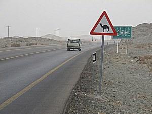 Warnung vor Kamelen
