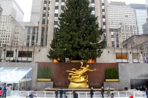 The Christmas Tree outside 30 Rock