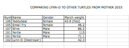 Introducing Lynn-D By The Numbers (3/5)