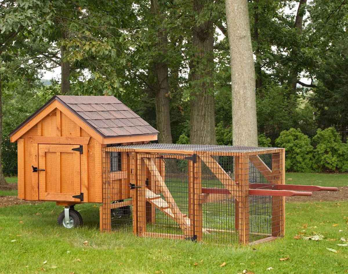 20 creative diy chicken coop ideas on a budget (9)