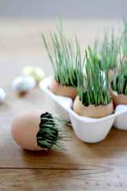 30 brilliant diy egg shell seed starters crafts ideas (15)